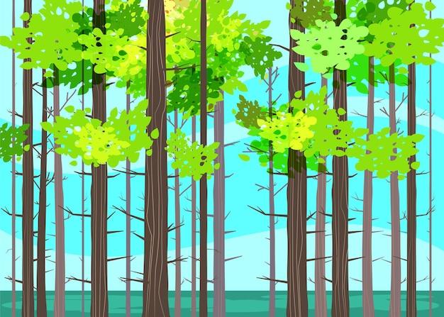 Prachtige lente bosbomen, groen gebladerte, landschap, struiken, silhouetten van stammen, horizon Premium Vector