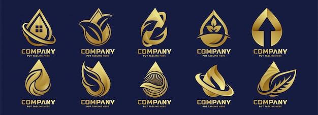 Premium luxe eco water drop logo sjabloon voor bedrijf Premium Vector