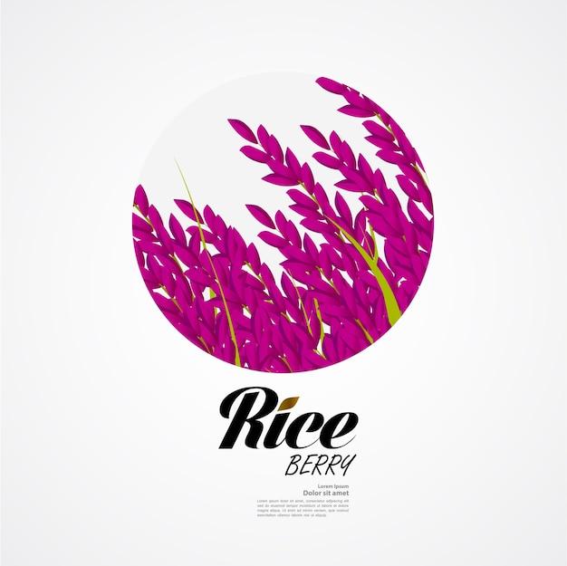 Premium rice ontwerpconcept van hoge kwaliteit Premium Vector