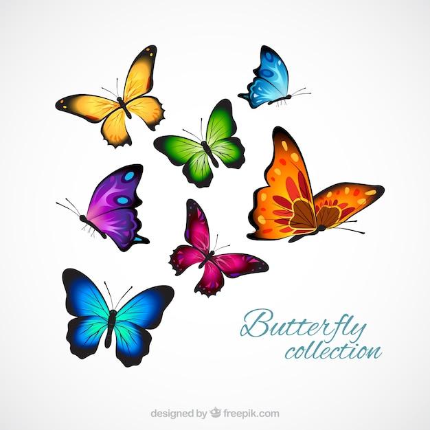 Realistisch en kleurrijke vlinders Gratis Vector