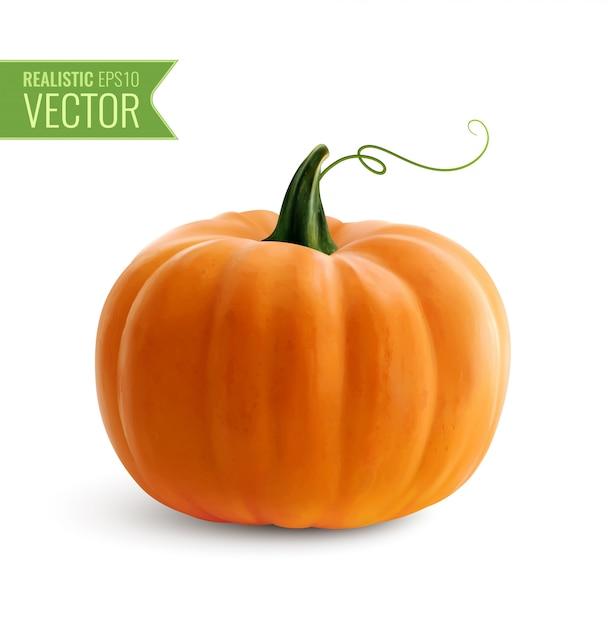 Realistisch oranje pompoenpictogram op wit voor decoratie halloween of thanksgiving dayvakantie Gratis Vector