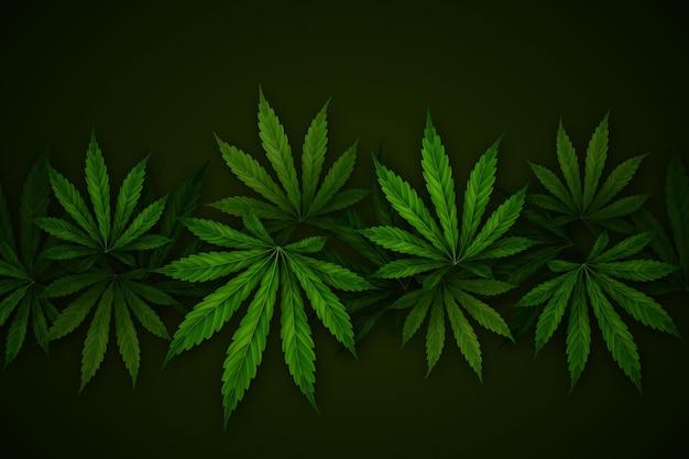 Realistische cannabis blad achtergrond Gratis Vector