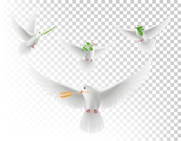 Realistische duiven met takken. witte vliegende duiven geïsoleerde set. illustratie realistische duif met groene tak Premium Vector
