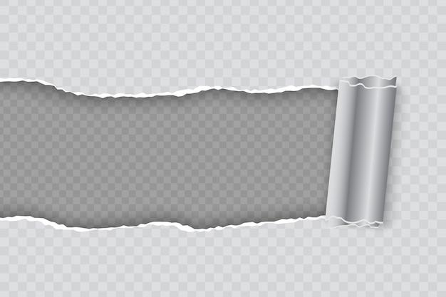 Realistische gescheurd papier met opgerolde rand op transparante achtergrond Premium Vector