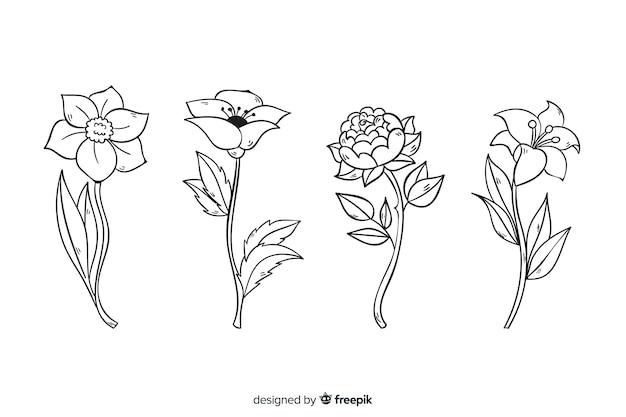 Realistische hand getekend botanische bloemen collectie Gratis Vector
