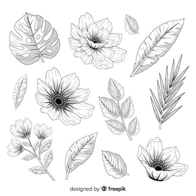 Realistische hand getrokken bloemen en bladeren Gratis Vector