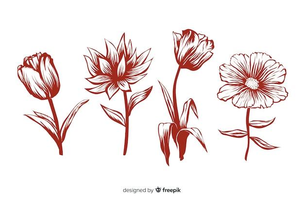 Realistische hand getrokken bloemen met stengels en bladeren in rode kleuren Gratis Vector