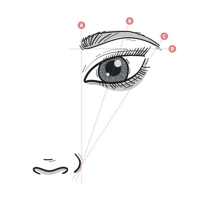 Realistische hand getrokken brow mapping illustratie Gratis Vector