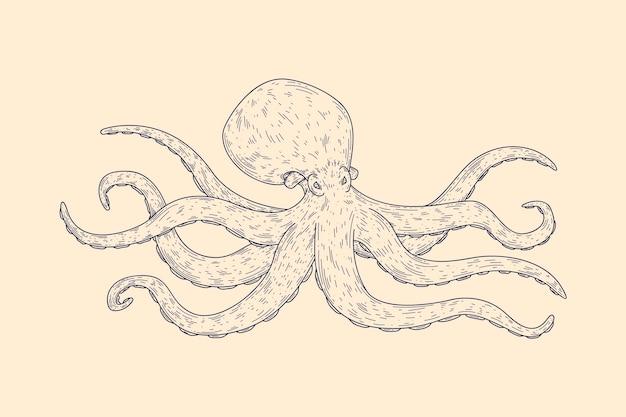 Realistische handgetekende octopus Gratis Vector