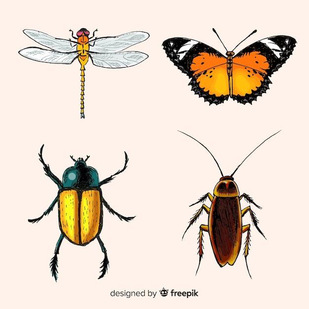 Realistische insectencollectie Gratis Vector