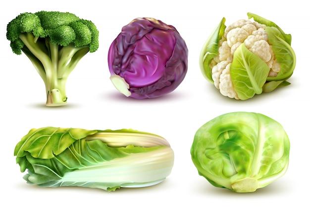 Realistische set met verse witte kool broccoli chinese verlaat bloemkool geïsoleerd Gratis Vector