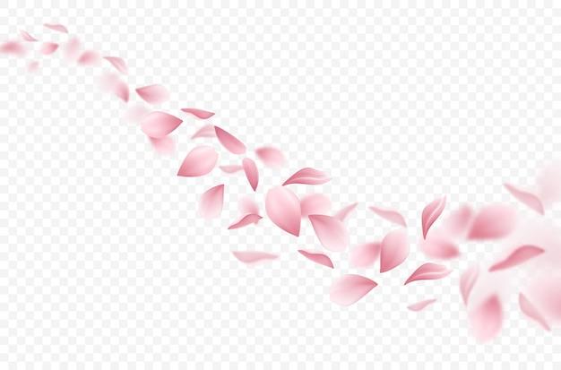 Realistische vliegende sakura bloemblaadjes illustratie Gratis Vector