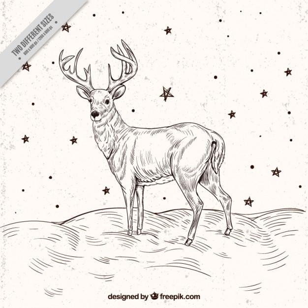 Rendier schets achtergrond met sterren Gratis Vector