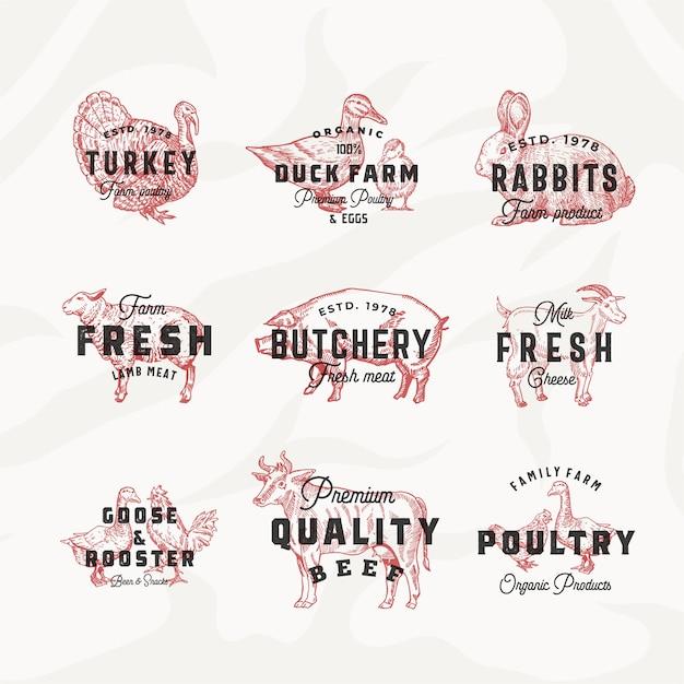 Retro logo sjablonen voor vee en pluimvee. Gratis Vector