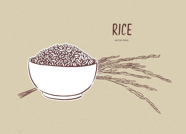 Rijstvector in kom met rijsttak Premium Vector