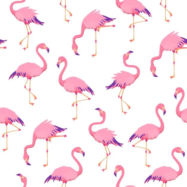 Roze flamingo'spatroon naadloos Premium Vector