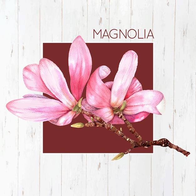 Roze magnolia achtergrond Gratis Vector