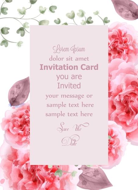 Roze rozen kaart aquarel Premium Vector