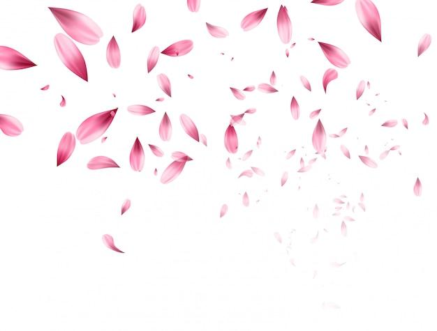 Roze sakura vallende bloemblaadjes achtergrond. Premium Vector