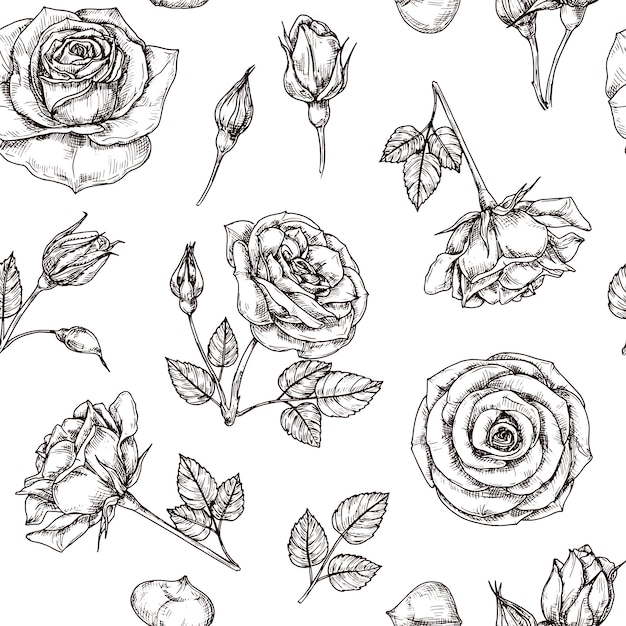 Rozen naadloos patroon. hand getekend roos bloemmotief. bloemstof herhaal vector vintage Premium Vector