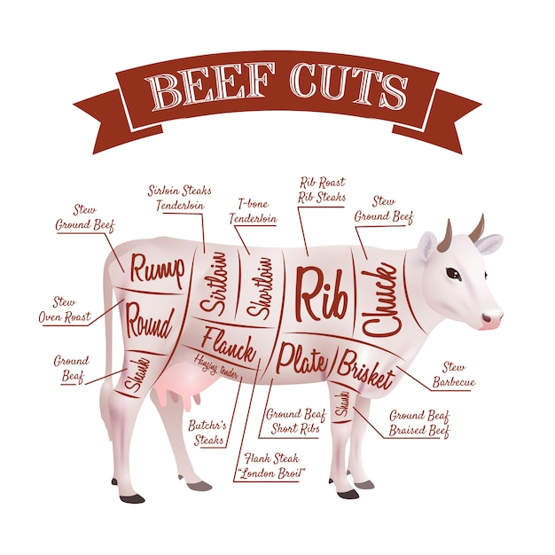 Rundvlees snijdt illustratie Gratis Vector
