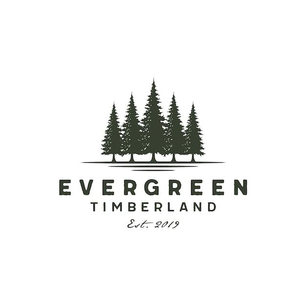 Rustiek vintage groenblijvend, pines, vuren, cedar bomen-logo Premium Vector