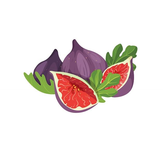 Samenstelling van heerlijke vijgen geïsoleerd op een witte achtergrond. geheel en gesneden vers exotisch zoet vijgenfruit met bladerenelement voor productlabel, logo, print. Premium Vector