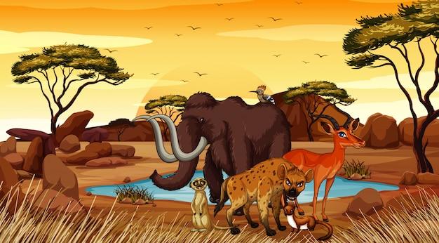Scène met dieren op woestijngebied Premium Vector