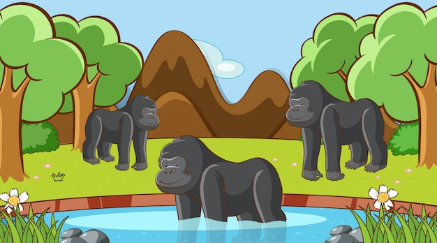Scène met gorilla in het bos Gratis Vector