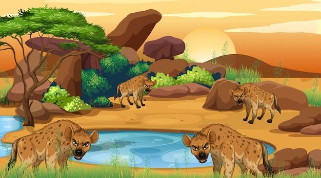 Scène met hyena op het savanagebied Premium Vector