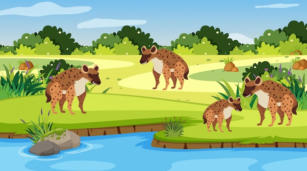Scène met hyena's aan de rivier Premium Vector