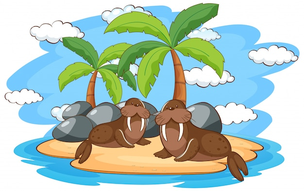 Scène met twee walrussen op eiland Gratis Vector