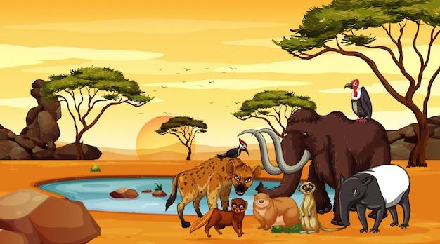 Scène met veel dieren bij de savanne Premium Vector