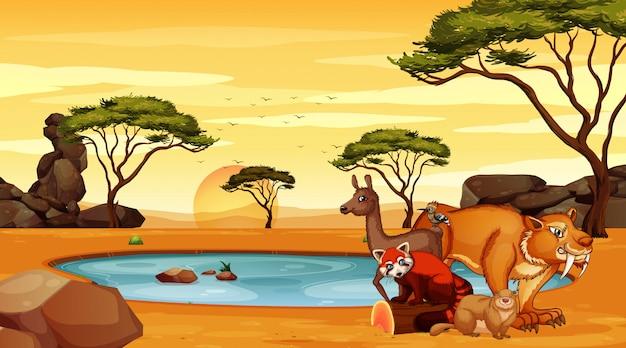 Scène met veel dieren in het veld Premium Vector