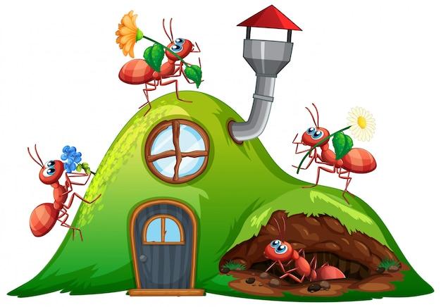 Scène met veel mieren op heuvelhuis Gratis Vector