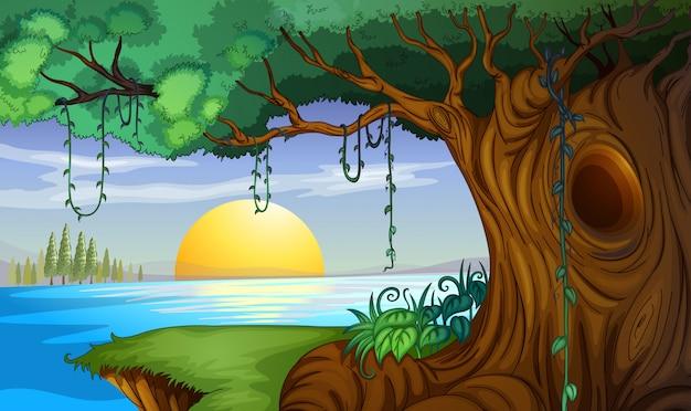 Scène met zonsondergang bij de meerachtergrond Gratis Vector