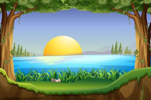 Scène met zonsondergang bij het meer Gratis Vector