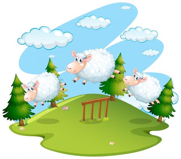 Scène van het veld met springende schapen Premium Vector