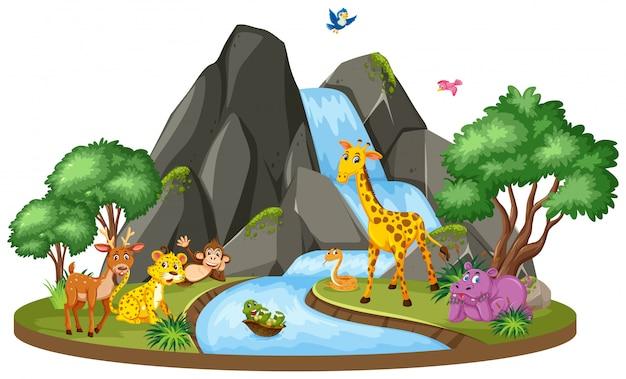 Scène van wilde dieren bij de waterval Premium Vector
