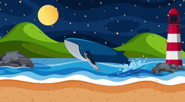 Scène walvis in de oceaan Premium Vector