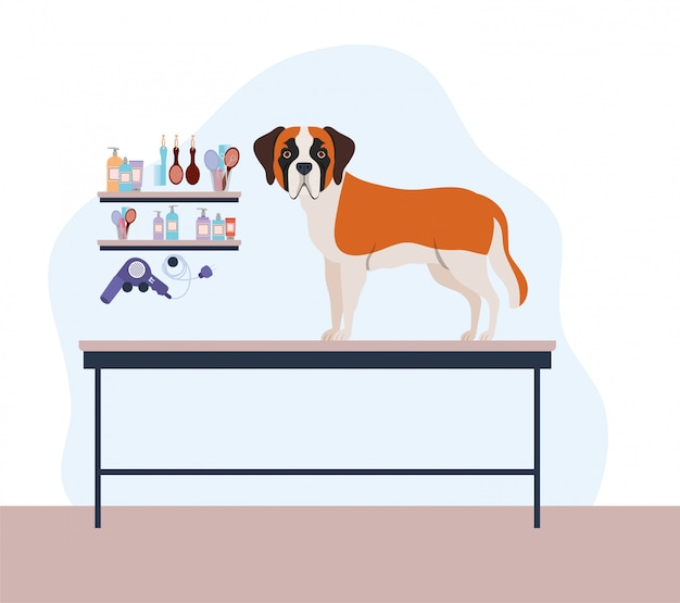 Schattig saint bernard hond huisdier karakter Premium Vector