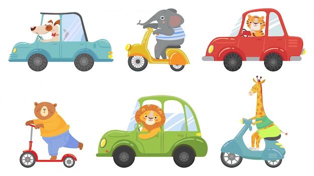 Schattige dieren op transport. dier op scooter, rijdende auto en dierentuin cartoon vector illustratie reisset Premium Vector