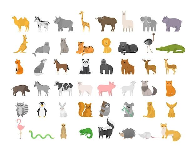 Schattige dieren set met boerderij en wild karakter. kat en leeuw, olifant en aap. zoo collectie. geïsoleerde platte vectorillustratie Premium Vector