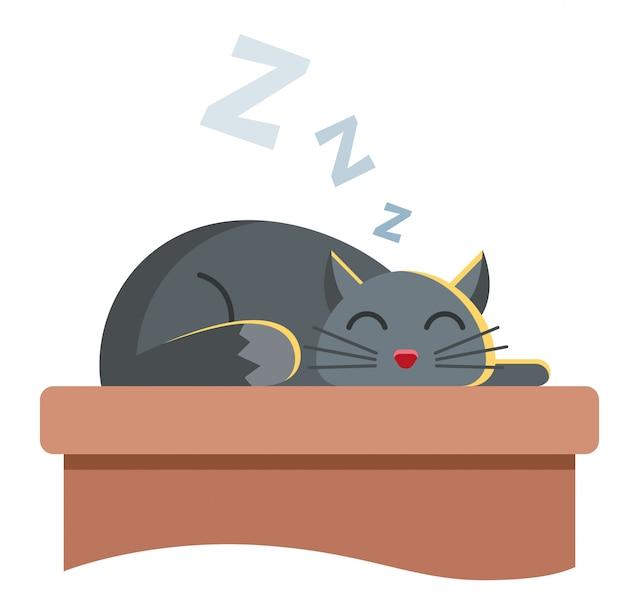 Schattige grijze kat ligt op de tafel en sluimert vredig. snurken schattig dier. Premium Vector
