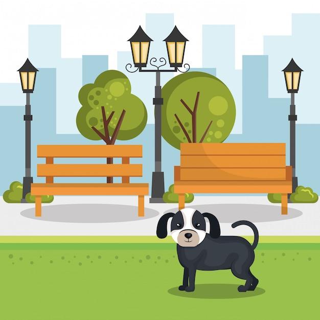 Schattige honden in de parkscène Gratis Vector