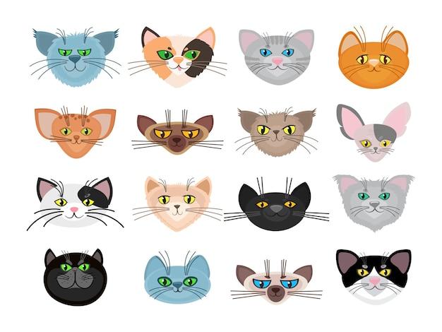 Schattige kat gezichten illustratie. snuitdieren en aantal huisdieren met snorharen Gratis Vector