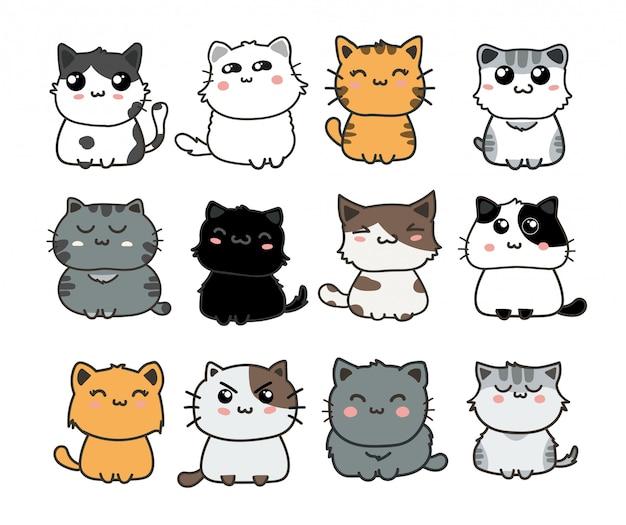 Schattige katten set Premium Vector