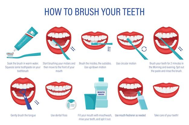Schema voor het poetsen van uw tanden. stapsgewijze instructies. Premium Vector