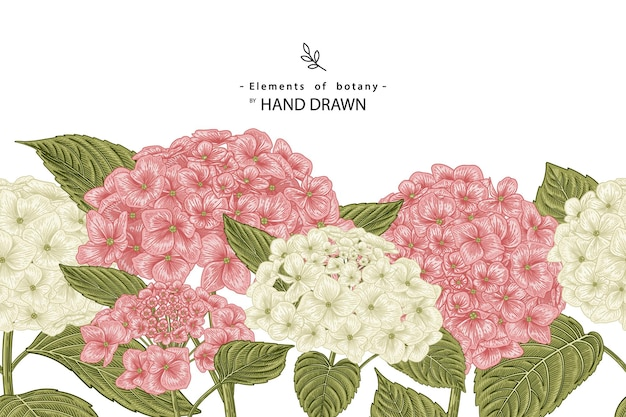 Schets floral decoratieve set. Gratis Vector