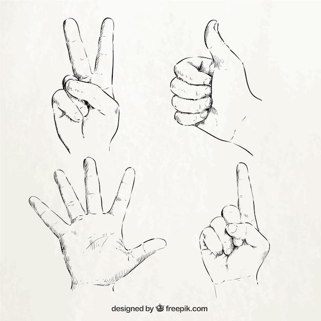 schetsmatige hand tekenen | vector | premium download